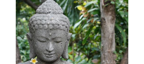 Buddha vertraue